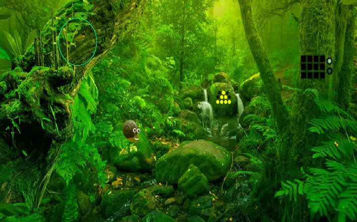Games2Rule - Green Forest…