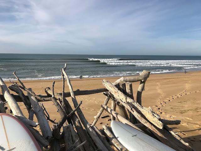Surf - Hossegor - December - Surfin Estate