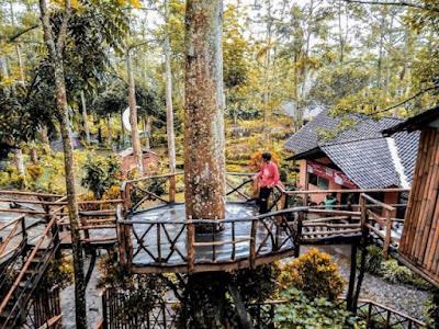 Rumah Pohon Taman Kelir Kediri