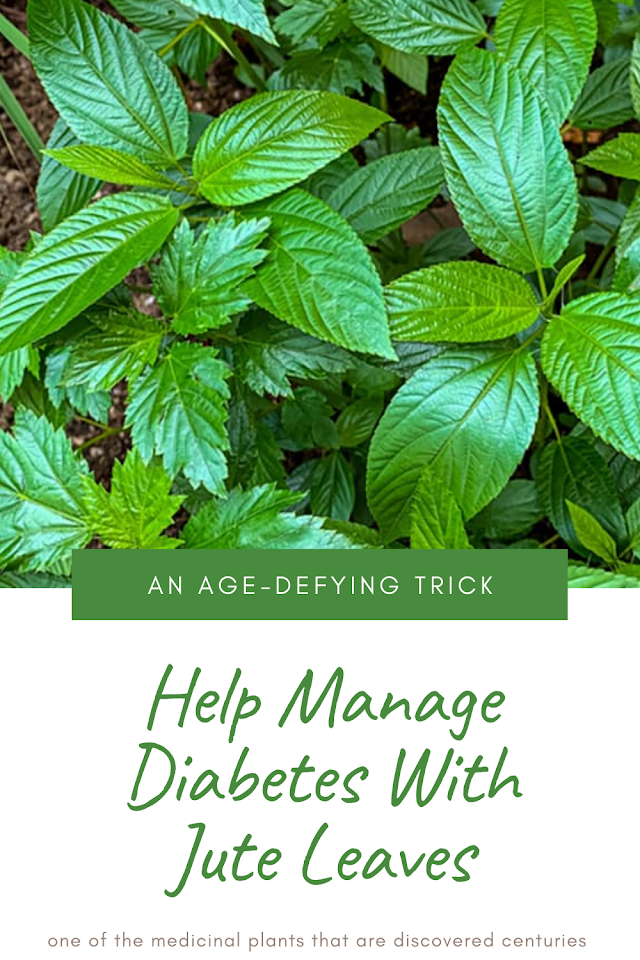 Help Manage Diabetes With Jute Leaves