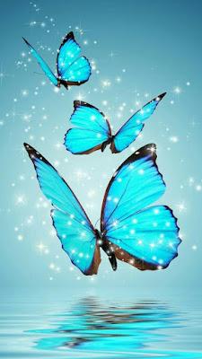 اجمل صور جميلة للشاشة، خلفيات شاشة فراشات زرقاء طائرة