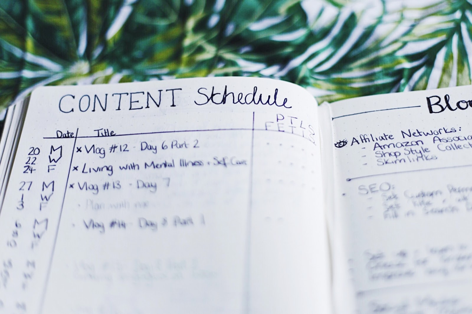 Bullet Journal Content Schedule