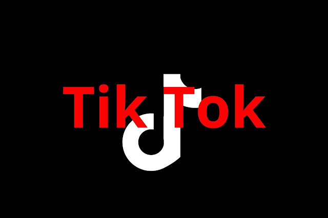 Can You Earn Money From Tik Tok Hindi | Waseem Tech1