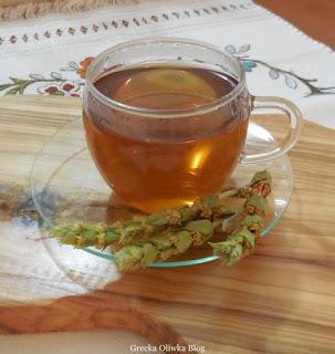 zaparzona herbata, gałązki ziela na talerzyku, grecka herbata