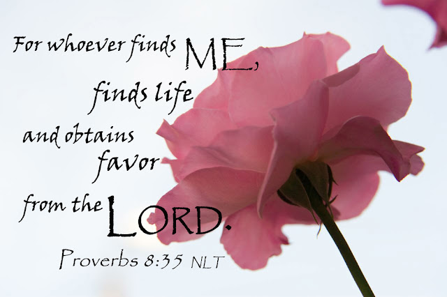 For those who find me find life and receive favor from the Lord.