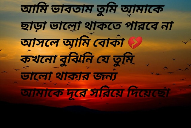 Bangla Sad Shayari Photo | Love Shayari Image