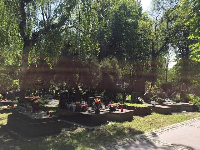 cemitério saudade