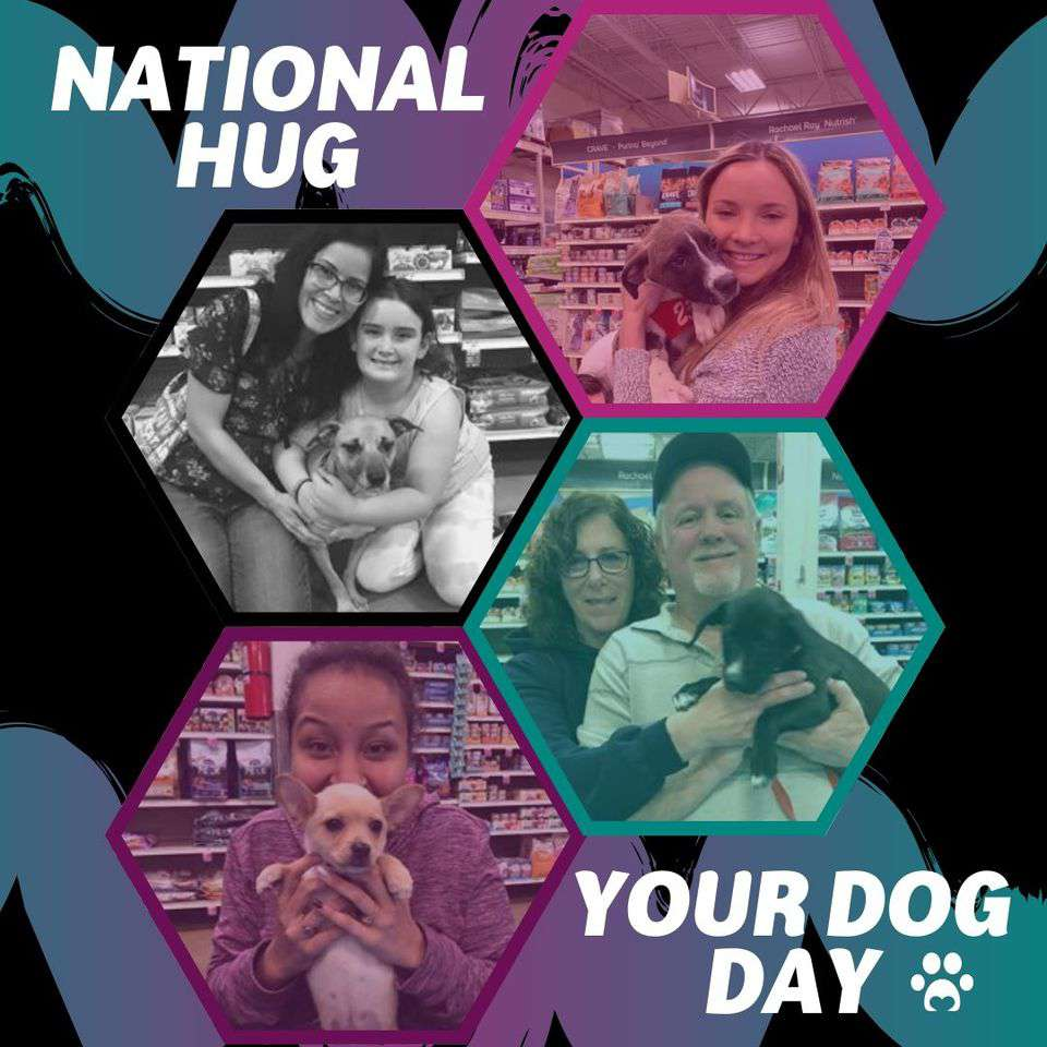 National Hug Your Dog Day Wishes Images download