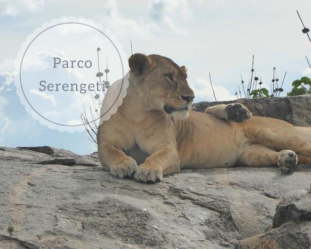 Parco del Serengeti: safari di due giorni