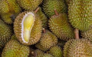 Australia Hadirkan Festival Durian Sepanjang Maret