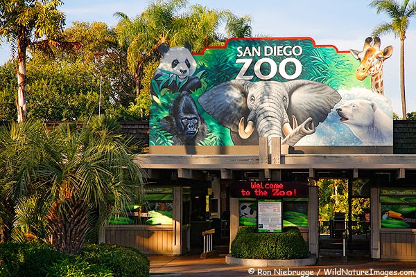 10 of the World's Most Famous Zoos