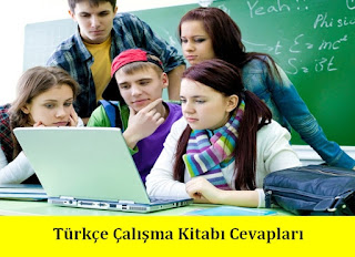 7. Sınıf Türkçe Dersdestek Yayınları Çalışma Kitabı Cevapları