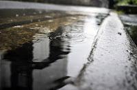 Ploaie de toamnă