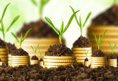 Investasi-Syariah-Gathering-Kampung-Kurma-jonggol-jasinga-banten-cirebon