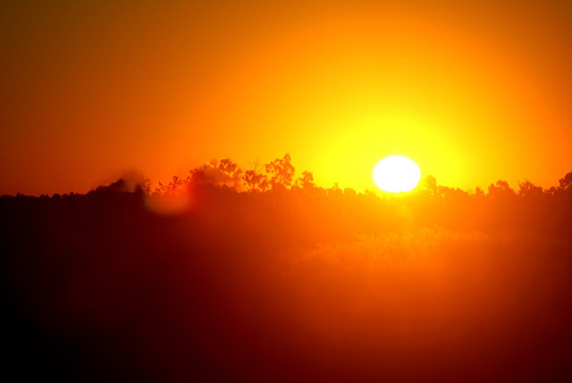 Future summers could regularly be hotter than the hottest on record