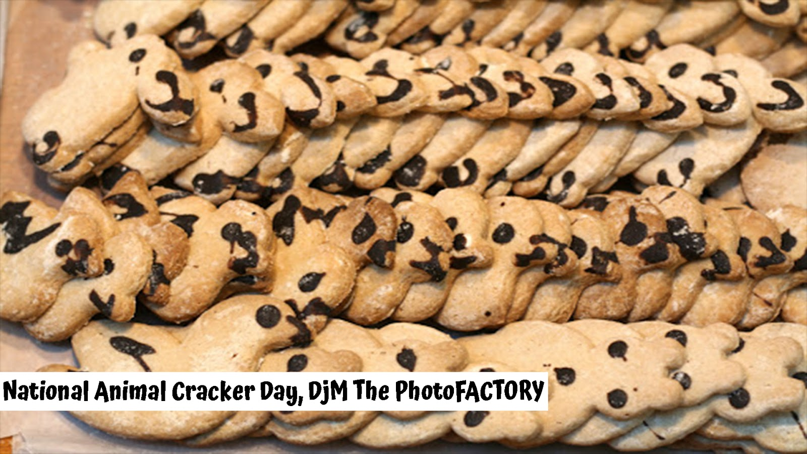 National Animal Cracker Day images photos quotes