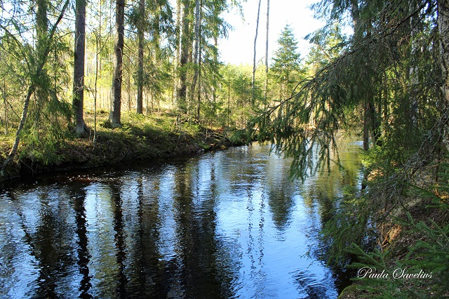 Vilajoki Ylämaalla