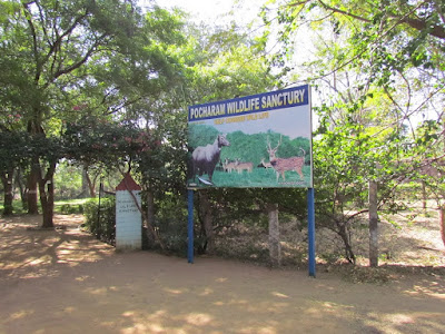 Pocharam Wildlife Sanctuary