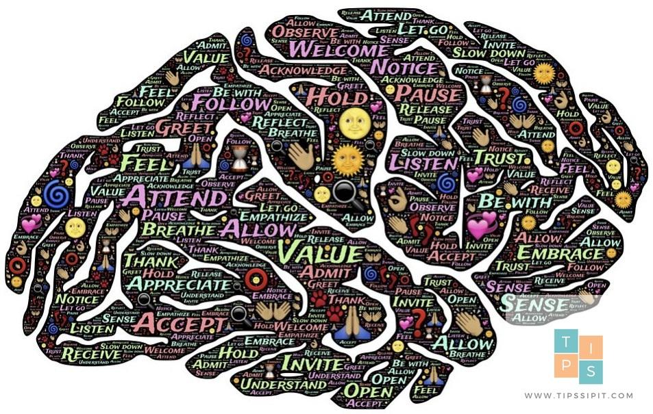 membuat otak fokus dan konsentrasi