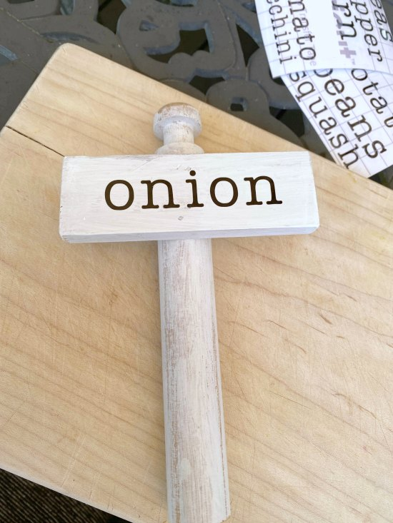 Onion vegetable marker for the garden