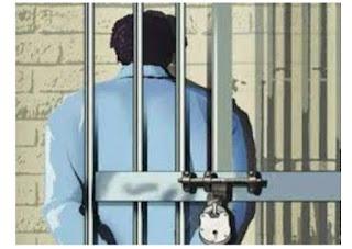 बकरी की मृत्यु कारित एवं मारपीट करने वाले चार आरोपियों को न्यायालय ने भेजा जेल