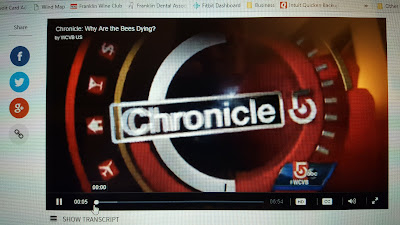 screen grab of the Chronicle intro