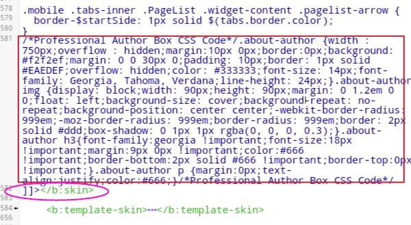 paste-css-code-before-bskin