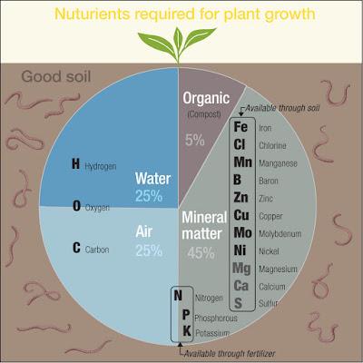 healthy soil by Yukié Matsushita