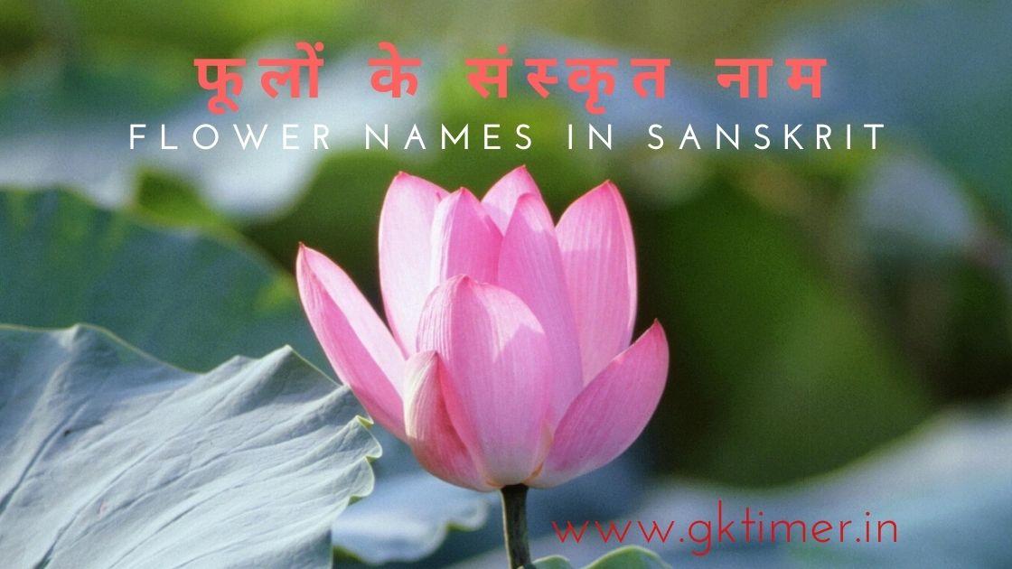 Flowers name in sanskrit,Hindi & English
