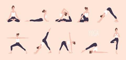 5 Best Yoga Pants for Women