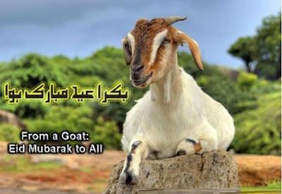 Eid al-Adha | Bakra Eid | Eid mubarak wallpaper 2021