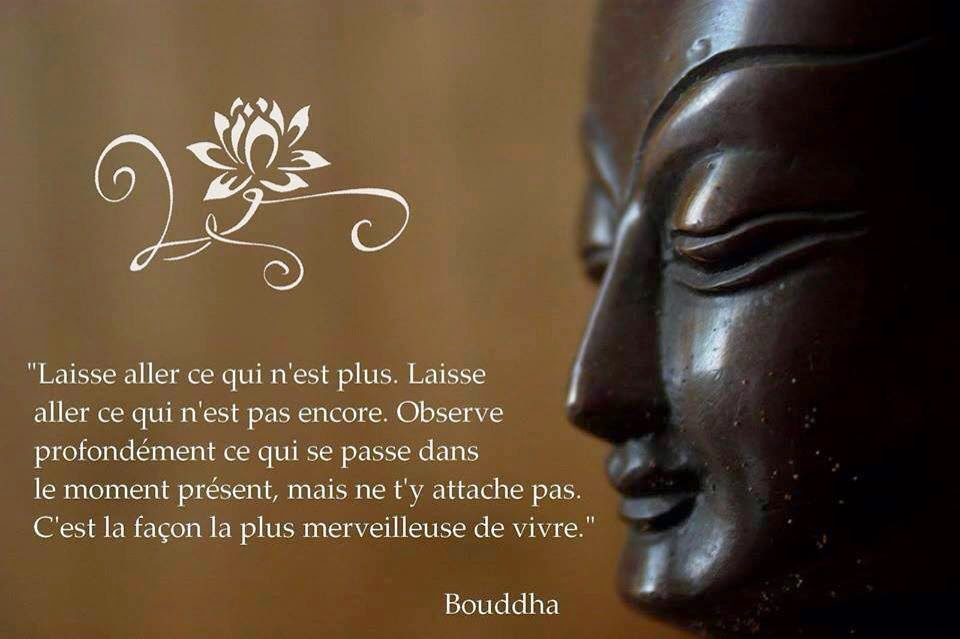 Citations Bouddha Amour