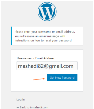 Lost Your Password wp admin