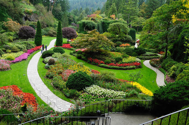 The Most Beautiful Rose Gardens In The World