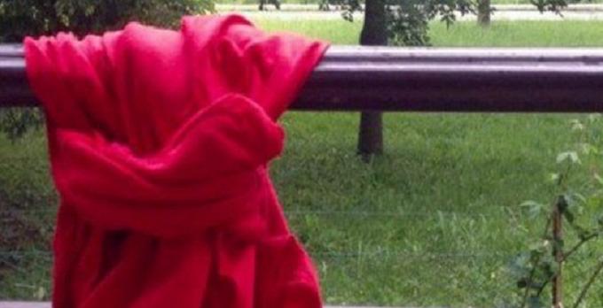 Violenza sulle donne, due femminicidi della notte a Padova e Catanzaro