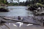 Indikasi Puluhan Ikan Mati di Sungai Ongkag Masih Ditelusuri
