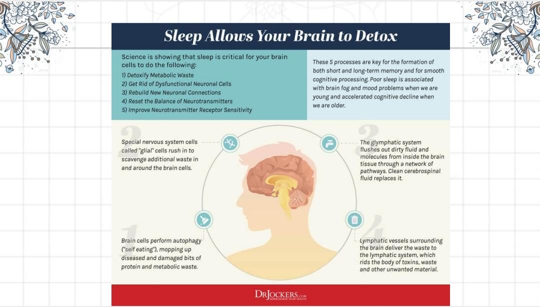 aktivitas tidur sangat penting bagi otak