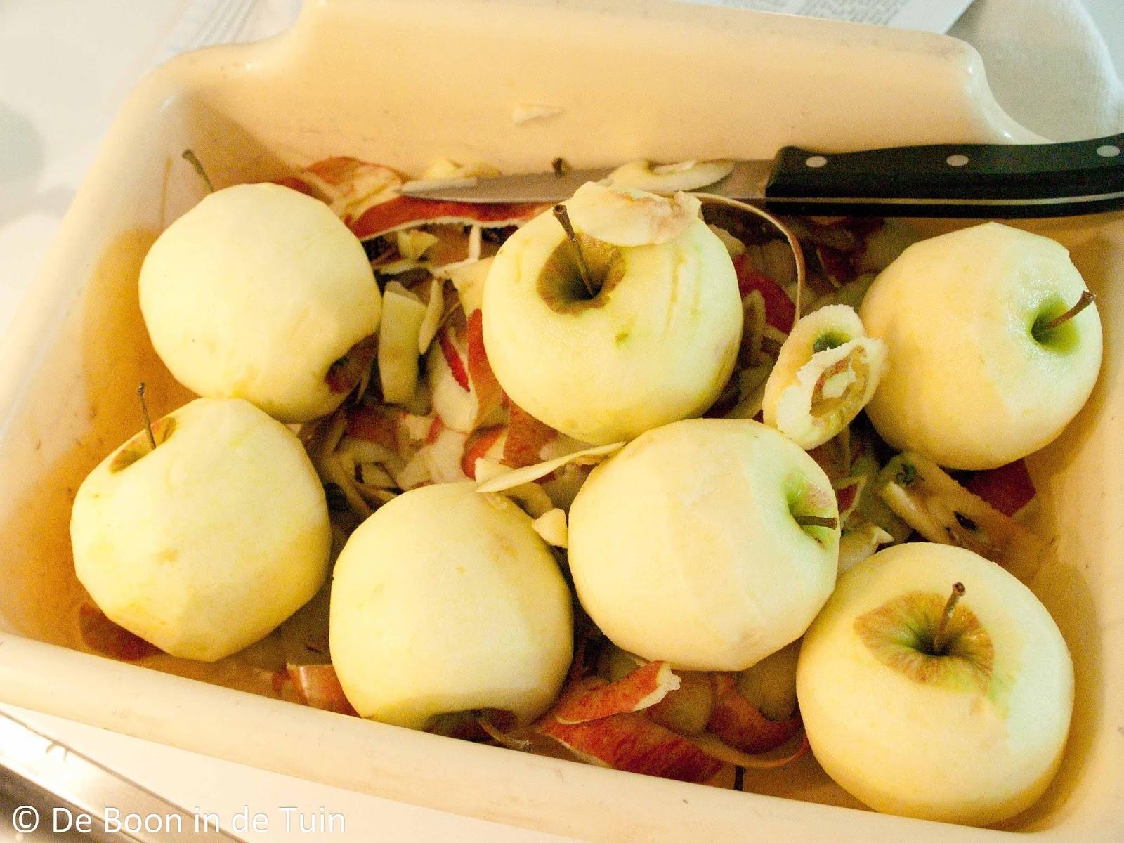 appel schillen inmaken kaneel steranijs