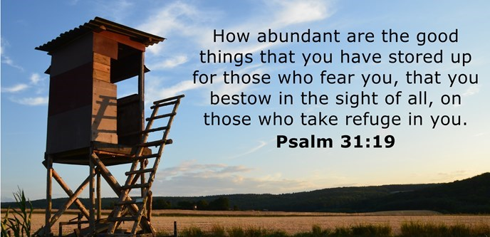 How abundant are the good things that you have stored up for those who fear you, that you bestow in the sight of all, on those who take refuge in you.