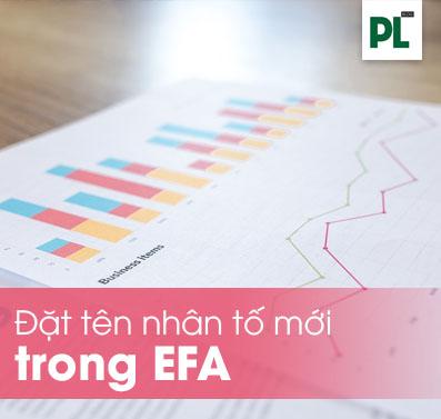 Đặt tên nhân tố mới trong EFA