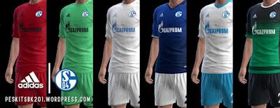 FC Schalke 04 2016/2017