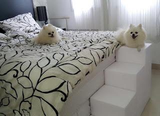 escadas para cães em cama box alta