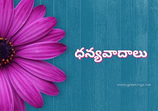 ధన్యవాదాలు, Thank you in Telugu
