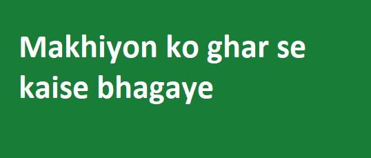 Makhiyon ko ghar se kaise bhagaye