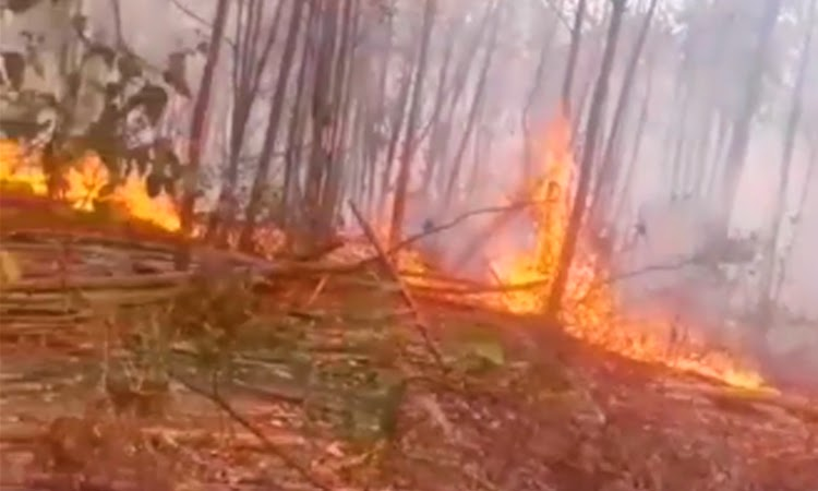 Corpo de Bombeiros controla dois focos de queimada no Sudoeste da Bahia