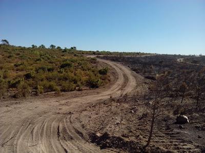montes de Zuera quemado el 21/08/2016