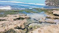 Pantai Seling Kates