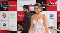 Surveen Chawla at Zee Cine Awards 2017 ~  Exclusive Galleries 009.jpeg