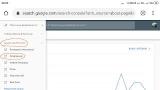 Cara Hapus URL di Webmaster Tools