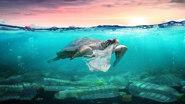 Contaminación de los océanos prevé una apocalipsis para 2050